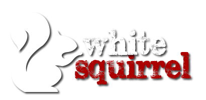 White Squirrel Design Studio